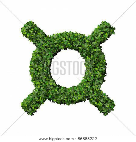 Currency symbol made from green leaves.