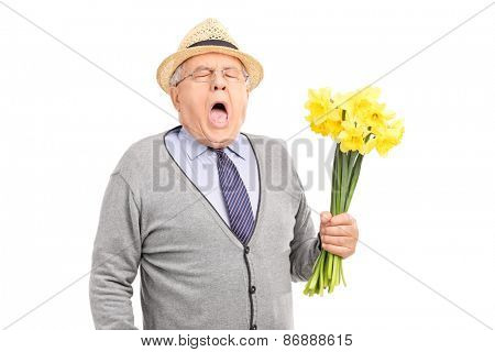 Senior gentleman having an allergic reaction to a bunch of tulips isolated on white background