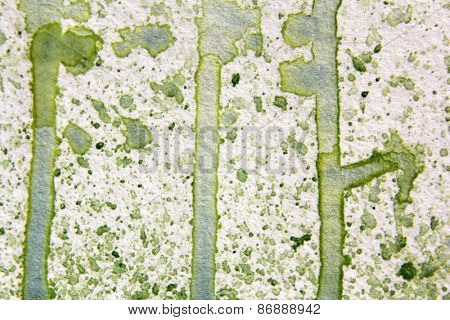 Light Green Watercolor Textures 4