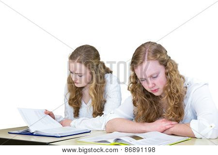 Two dutch teenage girls studying books for education