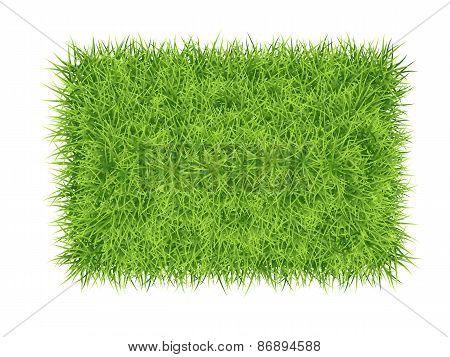 Grass Carpet Background