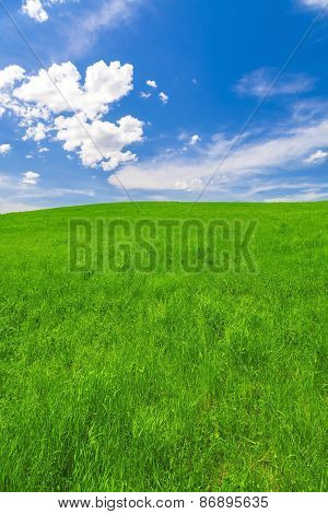 Spring landscape, field and blue sky