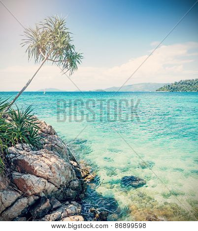 Cross Processed Picture Of Rocky Shore.