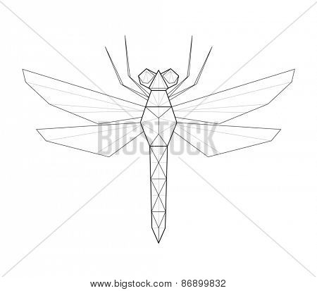Dragonfly. Low polygon linear illustration