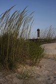 foto of sea oats  - Sea oats sway in the morning breeze with the Isle of Palms Lighthouse in the background on the South Carolina Atlantic coast.