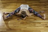 pic of tortoise  - Female Yoga Model Kurmasana Tortoise Pose Overhead - JPG
