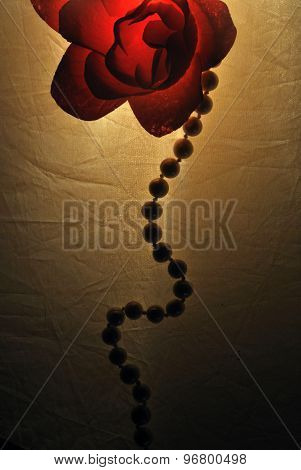 soap rose and pearl necklace on white background