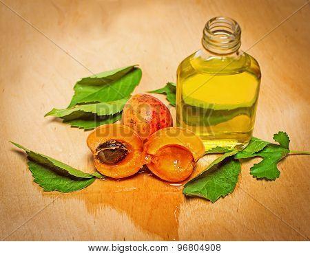 Apricot Oil..