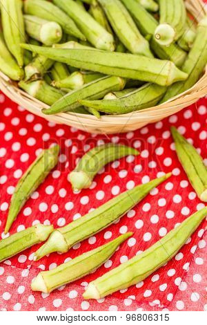 Green Okra Vegetable