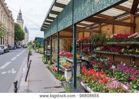 Flower Stall Along Seine River In Paris