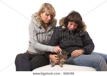 Fondling The Cat
