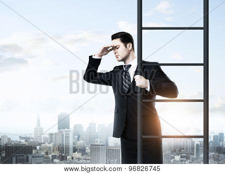 Businessman Climbing On Ladde