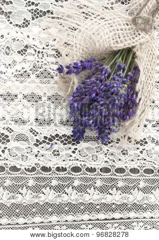 retro background with fresh lavender and old lace
