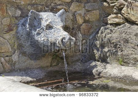 Wild boar fountain
