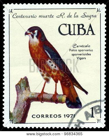 Vintage  Postage Stamp.  Bird American Kestrel.