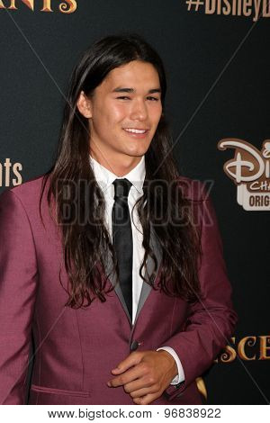 LOS ANGELES - JUL 24:  BooBoo Stewart at the