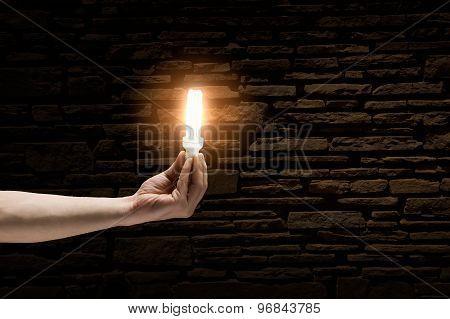 Light in darkness