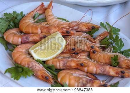 Italian Seafood: Fresh Shrimps