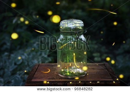 Fireflies in a jar.  Long exposure