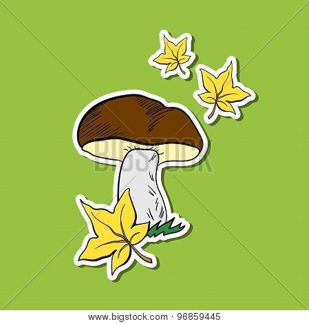 AutumnMushroom