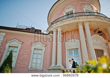 Groom And Bride On The Territory  Exquisite Castle