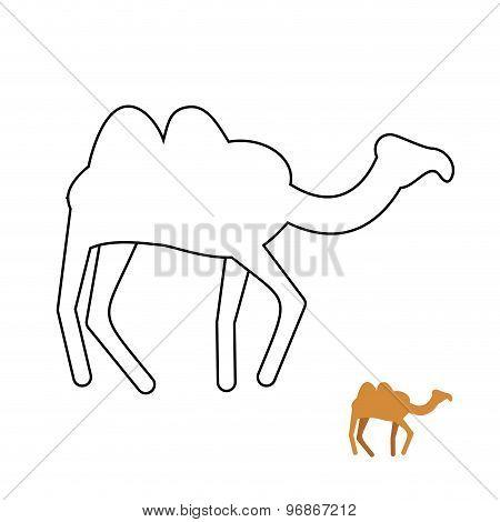 Camel Coloring Book. Desert Animal Vector Illustration.