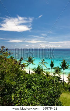 Seaview From Above, Tropical Beach