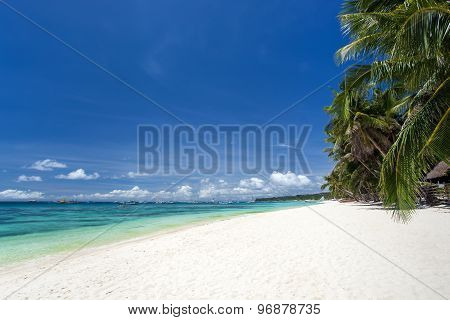 Tropical Beach With Coconut Palm Trees, White Sand And Turquoise Sea Water