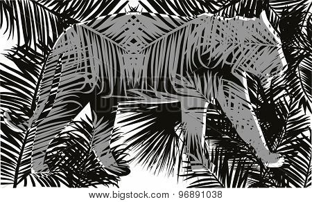 illustration with tiger silhouettes in fern leaves