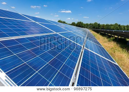Close Up Of Solar Panels In Straight Line