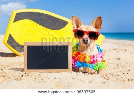 Surfing Dog Blackboard