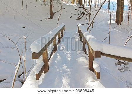 Snowy Hiking Path In The Forest With Bridge