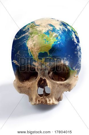 The real skull
