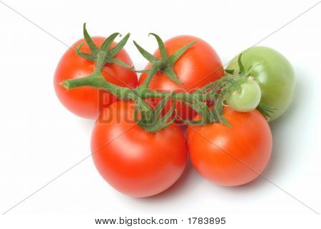 a bunch of red ripe tomatoes