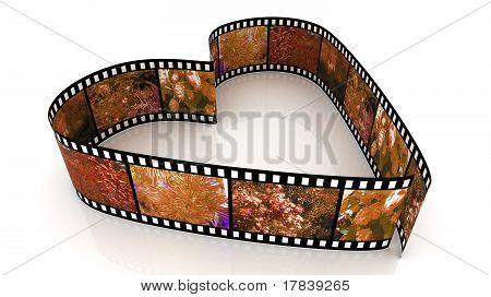 3d Filmes Heart filled by pictured