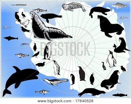 Ilustración con conjunto de aves y animales antárticos