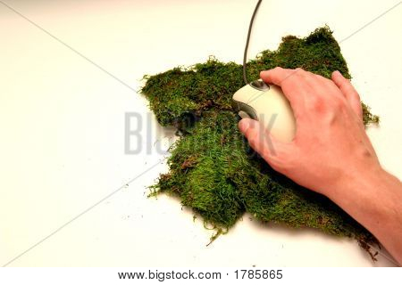 Mossy Mouse Pad