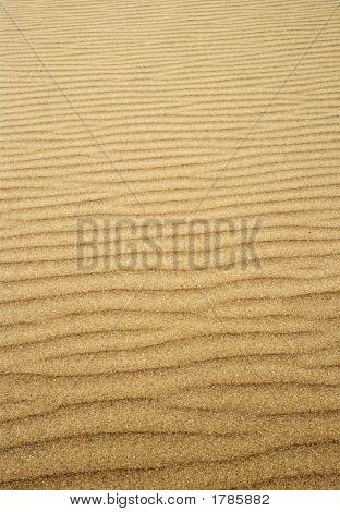 Rippled Sand