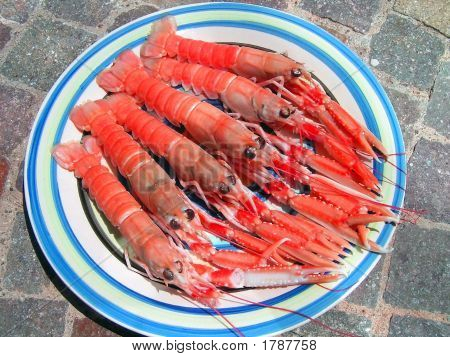 Five Norwegian Lobsters