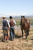 image of brahma-bull  - hard working cowboys looking off in the mountain side - JPG