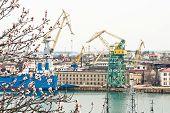 image of shipbuilding  - View of shipbuilding shipyard through the flowering trees - JPG