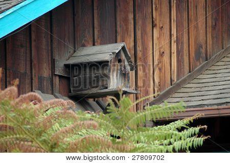 Birdhouse rústico