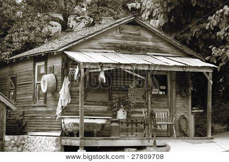adirondaks style cabin
