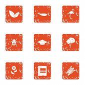 Zoological Icons Set. Grunge Set Of 9 Zoological Icons For Web Isolated On White Background poster