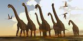 Brachiosaurus Dinosaurs On Trek 3d Illustration - Dimorphodon Reptiles Fly Past A Herd Of Brachiosau poster