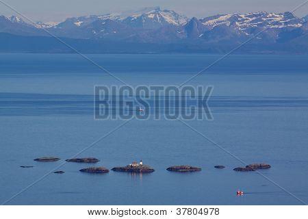 Lighthouse In Norwegian Sea