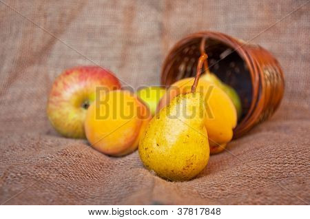 Pear And Punnet