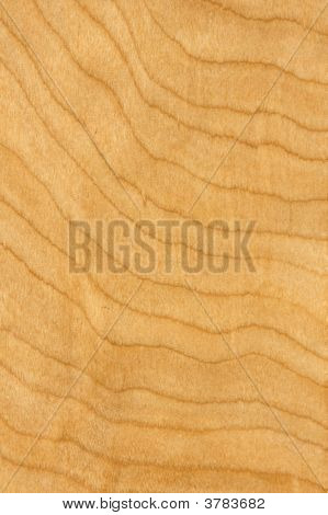 Maple Wood Grain