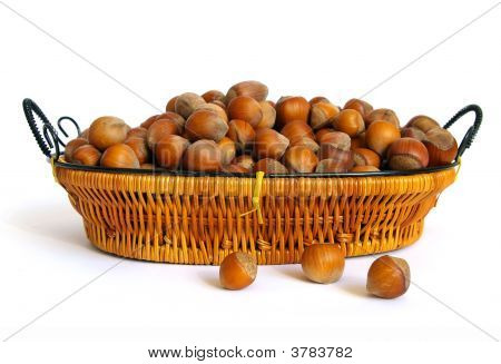 Wood Nuts On White Background