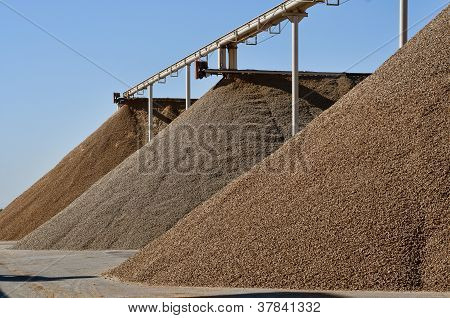 Huge Almond Piles